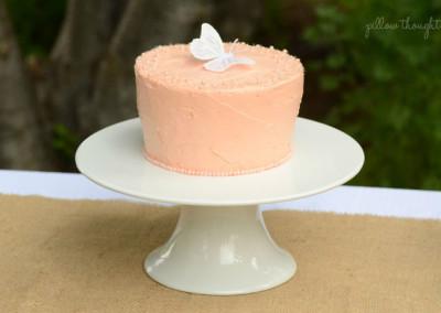 Enchanted Fairy Garden Party Cake