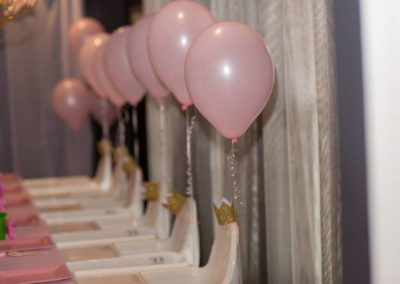 First Birthday Party with Decorations