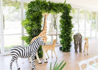 Jungle Birthday Party entry