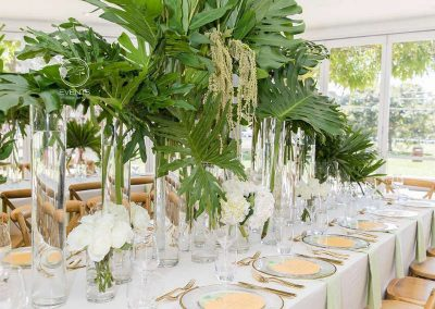 Jungle Birthday Party formal setting