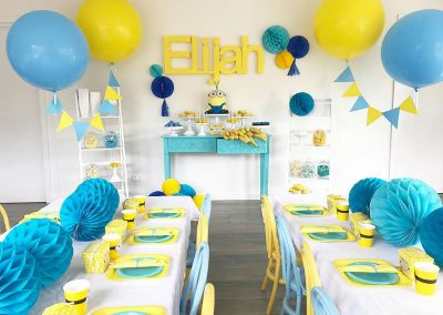 Minion Birthday Party overview feature