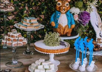 Peter Rabbit First Birthday Party - Sweets