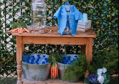 Peter Rabbit First Birthday Party - Drink Station