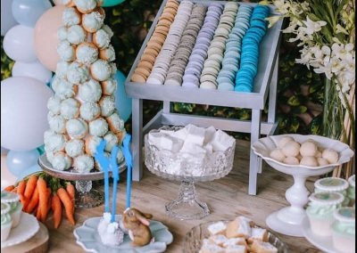 Peter Rabbit First Birthday Party - Treats