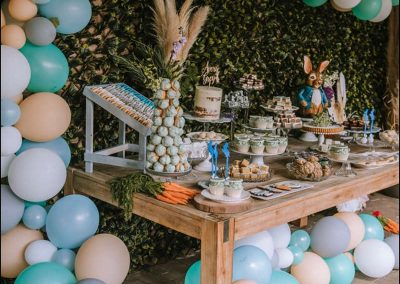 Peter Rabbit First Birthday Party - Featured